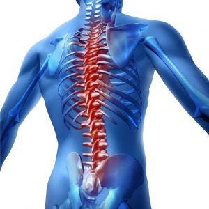 Physical therapy for back pain in Allentown